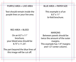 brochure margins half fold